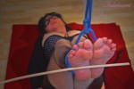 graceful-bastinado-112