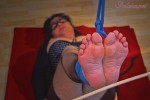 graceful-bastinado-118