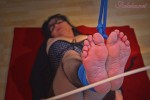 graceful-bastinado-132
