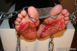 falaka_torture_309