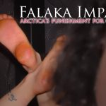 Falaka Impact 3