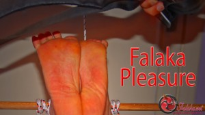 Falaka Pleasure HD Cover