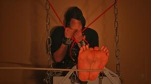 Falaka Torture Oriental
