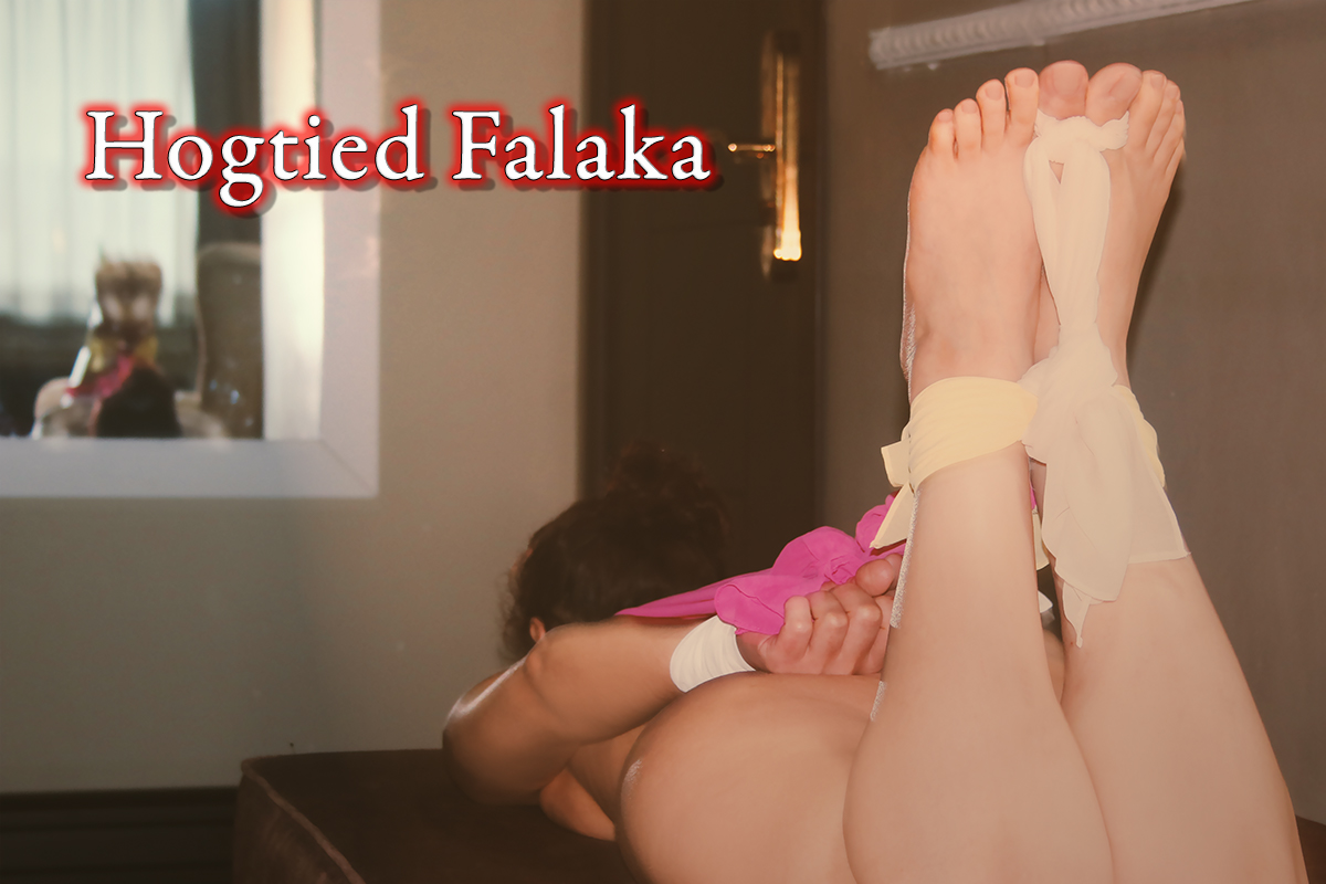 Hogtied Falaka